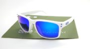 Holbrook Alonso Polarized