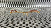 Kacamata Cartier Titanium 7598 wood Premium Gold